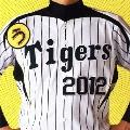 うたイガース!! 阪神タイガース選手登場曲集 2012