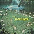 フラミンゴス<限定盤>
