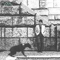 PRETENDER<タワーレコード限定>