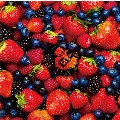 STRAWBERRY TIMES(Berry Best of HiGE)<通常盤>