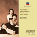 Tchaikovsky : Piano Concerto No.1, Violin Concerto Op.35, Rococo Variations, etc