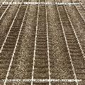 スティーヴ・ライヒ: ディファレント・トレインズ、エレクトリック・カウンターポイント<完全限定生産盤>