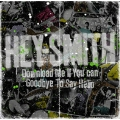 Download Me If You Can / Goodbye To Say Hello<通常盤>