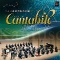 カンタービレ -気迫の音楽を- 2013-2020
