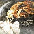 Disarm The Descent: Special Edition [CD+DVD]
