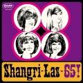 シャングリラス-65!