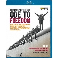 自由への頌歌-「1989年11月9日 ベルリンの壁崩壊」25周年を祝して