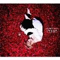 『2012』 (MUSIC CLIP盤) [CD+DVD]