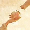 りんごの木/宇宙からやってきたにゃんぼー