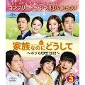 家族なのにどうして~ボクらの恋日記~ BOX3 <コンプリート・シンプルDVD-BOX><期間限定生産版>