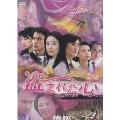 偸心(とうしん) Stolen Heart DVD-BOX(9枚組)