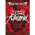 FALLING INTO THE FLAMES OF PURGATORY [DVD+2CD+TシャツM]<完全生産限定版>
