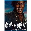 大河ドラマ 青天を衝け 完全版 第弐集 DVD BOX