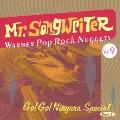 ミスター・ソングライター ~ワーナー・ポップ・ロック・ナゲッツ Vol.9 ゴー!ゴー!ナイアガラ・スペシャル パート1