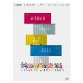 AKB48 2013 真夏のドームツアー~まだまだ、やらなきゃいけないことがある~ スペシャルBOX [10Blu-ray Disc+ブックレット]