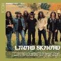Icon : Lynyrd Skynyrd