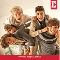 One Direction Mass 2013 Square Calendar (Browntrout)