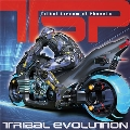 Tribal Evolution