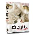 ねこばん DVD-BOX
