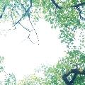 New Horizon<タワーレコード限定>