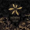 Flower: XIA (JUNSU) Vol.3: Special Edition [CD+DVD]