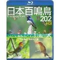 シンフォレスト 日本百鳴鳥 202 HD/ハイビジョン映像と鳴き声で愉しむ野鳥図鑑