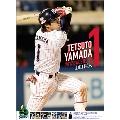 山田哲人(東京ヤクルトスワローズ) 2017 カレンダー