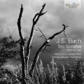 J.S.Bach: Trio Sonatas BWV.525-BWV.530