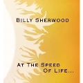 At The Speed Of Life...