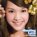 Meeting Love (遇上愛)