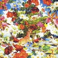 Wild Flowers<通常盤>