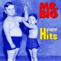 MR.BIG グレイテスト・ヒッツ<期間限定盤>