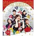 ももいろクリスマス2017 ~完全無欠のElectric Wonderland~ LIVE Blu-ray<通常版>