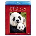 ディズニーネイチャー/ボーン・イン・チャイナ -パンダ・ユキヒョウ・キンシコウ- Blu-ray Disc