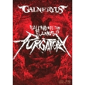 FALLING INTO THE FLAMES OF PURGATORY [Blu-ray Disc+2CD+TシャツM]<完全生産限定版>