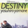 DESTINY-夢を追いかけて-
