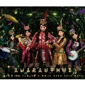 MOMOIRO CLOVER Z DOME TREK 2016 DAY1 AMARANTHUS