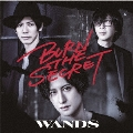 BURN THE SECRET [CD+DVD]<初回限定盤>
