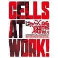 はたらく細胞 Vol.4 [Blu-ray Disc+DVD]<完全生産限定版>