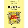 硝子の少年 SONGS of TATSURO YAMASHITA on BRASS
