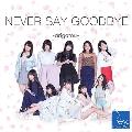 NEVER SAY GOODBYE ~arigatou~ (Type-B) [CD+DVD]