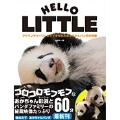 アドベンチャーワールドで生まれたあかちゃんパンダの奇跡 HELLO LITTLE [BOOK+DVD]