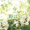 野ばら [CD+DVD]<限定盤>