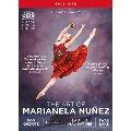 マリアネラ・ヌニェスの芸術 BOX 英国ロイヤル・バレエ DVD