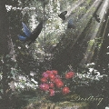 Destiny [CD+DVD]