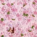ライブ・アット・ラカーニャ 春