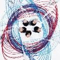 THE PENDULUM [CD+DVD]<初回生産限定盤A>