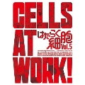 はたらく細胞 Vol.5 [DVD+CD]<完全生産限定版>