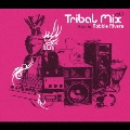 Tribal Mix vol.3 / Mixed By Robbie Rivera