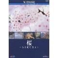 V-music01 「桜~SAKURA~」
